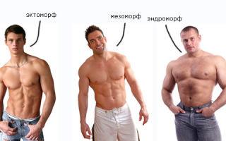 Типы телосложения в бодибилдинге
