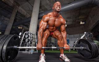 Влияние силового тренинга на рост мышечной ткани
