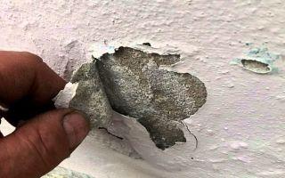 Как предотвратить отслаивание краски на стенах вашего дома