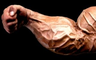 Как накачать мышцы предплечья