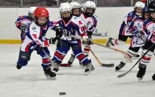 Польза хоккея для детей