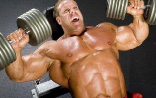 Почему же силовой тренинг не способен наращивать мышечную массу постоянно?