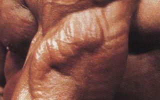 5 главных ошибок при тренировке трицепса