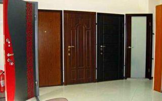 Критерии выбора качественных металлических дверей