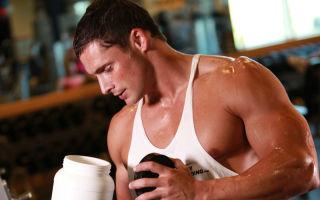 Что такое спортивное питание, и с чем его едят
