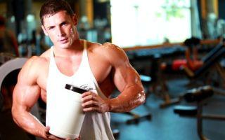 Сывороточный протеин и его значение