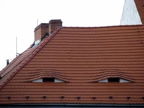 выбор типа крыши
