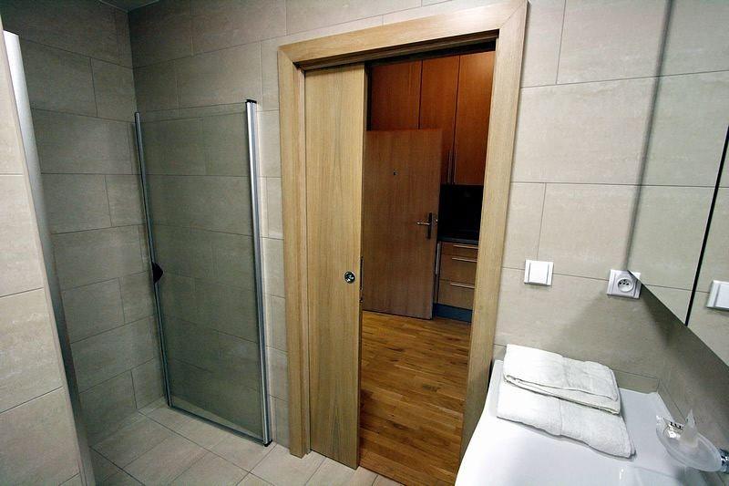 выбор материала для двери в ванну