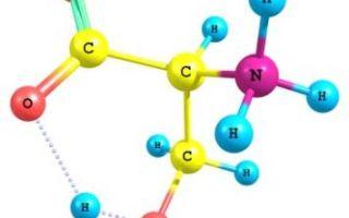 Десять важнейших аминокислот
