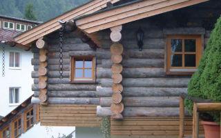 Особенности домов из сухостойной сосны