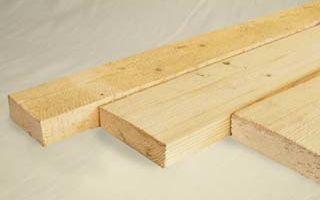 Берёзы – идеальный материал для производства фанеры
