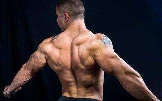 4 главных упражнений для спины охотника