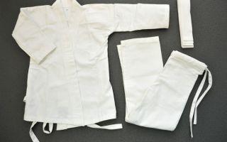 Как правильно выбрать кимоно для занятия каратэ?