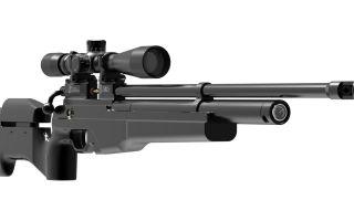 Для покупки оружия требуется лицензия