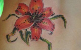 Красивая татуировка лилия